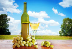 Bottle of wine and grape bunches against summer landscape Stock Photography