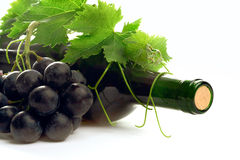 Bottle wine with grape and leafs Royalty Free Stock Photo