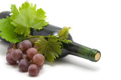 Bottle of wine with grape leafs and vine Stock Photo