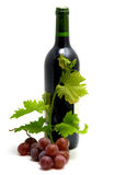 Bottle of wine with grape leafs and vine stock images