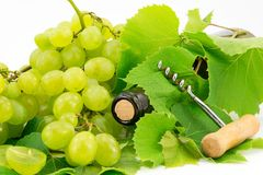 Bottle of wine with grape vines Royalty Free Stock Photography