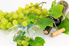 Bottle of wine with grape vines Royalty Free Stock Image