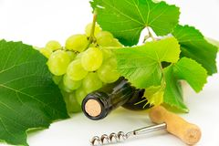 Bottle of wine with grape vines Stock Image