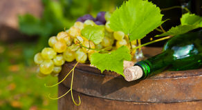 Bottle of wine and grapes Royalty Free Stock Photos