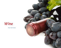 Bottle of wine and grapes Stock Images