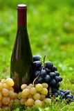 Bottle of wine and grapes in grass Royalty Free Stock Images