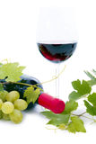Bottle of wine and grapes and leaves. Stock Photography