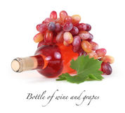 Bottle of wine and grapes Royalty Free Stock Photography