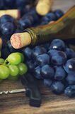 Bottle of wine, grapes and wine traffic jams Stock Photos