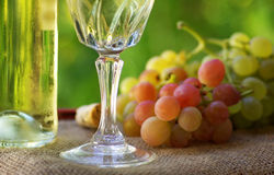Bottle of wine and grappes. Royalty Free Stock Photo