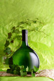 Bottle of wine with green leaf Stock Photos
