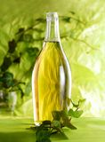 Bottle of wine with green leaf Royalty Free Stock Photos