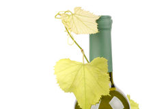 Bottle of wine with green leaf of grape Royalty Free Stock Photo