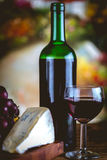 Bottle of wine, Mediterranean concept, ambient light Stock Images