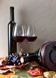 Bottle with wine Stock Image
