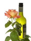 Bottle of wine with a rose stem Stock Image