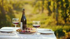 A bottle of wine with snacks is on the table. In the background, blurred outlines of the vineyard. Place for romantic. A table with a bottle of wine and tails stock photo