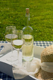 Bottle of wine on a tray. Bottle of wine and a glass outside Stock Photography