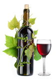 Bottle of wine in the vine Stock Photo
