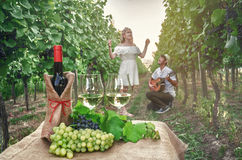 A bottle of wine, vine and glass of wine on the background of th Royalty Free Stock Photo