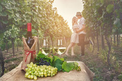 A bottle of wine, vine and glass of wine on the background of th Stock Image