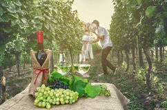A bottle of wine, vine and glass of wine on the background of th Royalty Free Stock Image