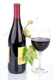 Bottle of wine in the vine with red wine Stock Photography