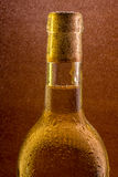Bottle of wine with the water droplets Stock Images