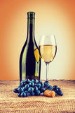 Bottle of wine and wineglass with branch of grape on burlap inst Stock Images