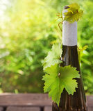 Bottle of wine on the wooden table outdoors Stock Photography