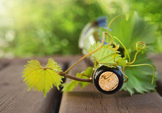 Bottle of wine on the wooden table outdoors Royalty Free Stock Photo