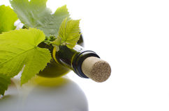 A bottle of wine with young grapes Stock Images