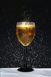 Bottle and Wineglass with Condensation Stock Image