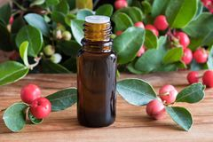 A bottle of wintergreen essential oil on a wooden background. A bottle of wintergreen essential oil with wintergreen twigs on a wooden background Stock Photo