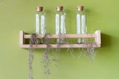 Bottle on wood green background Stock Photo
