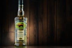 Bottle of Zubrovaka (Bison Grass) vodka Royalty Free Stock Photo