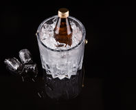 Bottled Drink And Ice Bucket XI Royalty Free Stock Photography