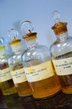 Bottled Laboratory Chemicals. Common laboratory chemicals Stock Images