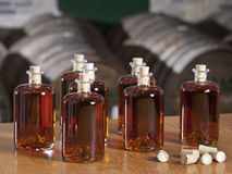 Bottled liquor Stock Images