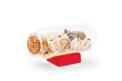 Bottled sea shells souvenir Royalty Free Stock Photography