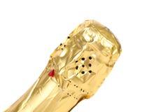 Bottleneck of champange. Stock Image