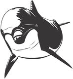 Bottlenose Dolphin vector illustration