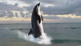 Bottlenose dolphin. In this composite, a Bottlenose dolphin propels itself above the water as it swims through the ocean stock photo