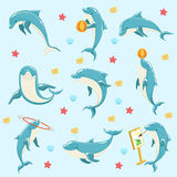 Bottlenose Dolphin Performing Tricks Set of Illustrations Royalty Free Stock Photo