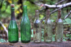 Bottles. On a fallen tree in the forest Royalty Free Stock Images