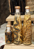 Bottles with alcohol with snakes and scorpions, Laos Royalty Free Stock Images