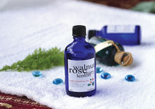 Bottles of aromatherapy oils Royalty Free Stock Photos