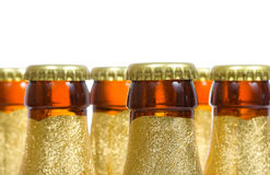 Bottles of beer Royalty Free Stock Photo