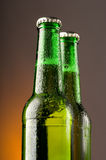 Bottles of beer Stock Image