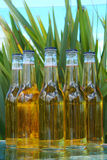 Bottles of beer. With natural background Royalty Free Stock Photo